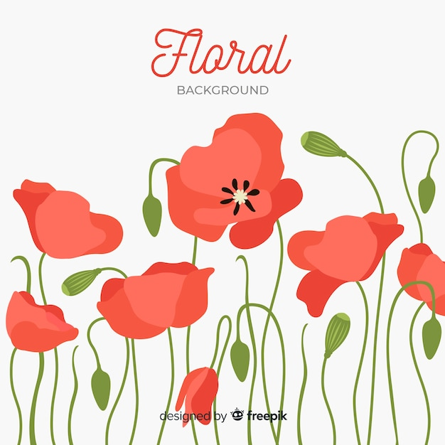 Poppy red flowers front view background Free Vector