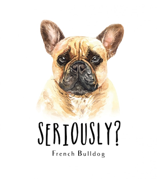 Portrait french bulldog for printing Premium Vector