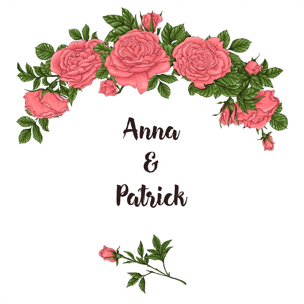 Postcard coral roses. hand drawing vector illustration Premium Vector