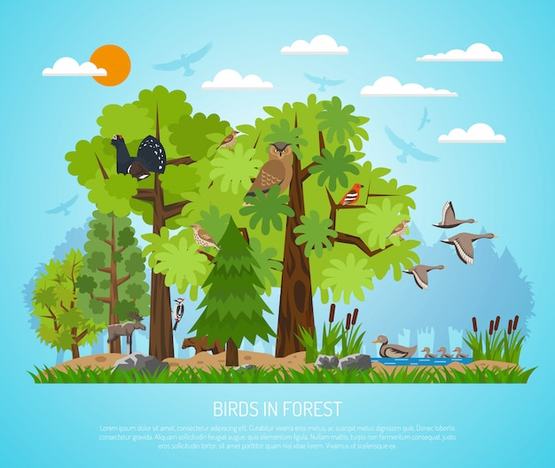 Poster of birds in forest Free Vector