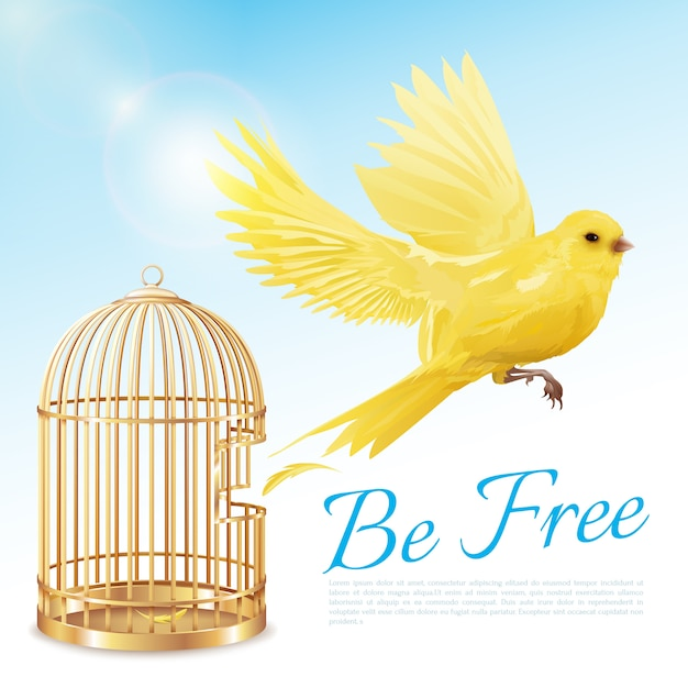 Poster with canary flying from open golden cage Free Vector