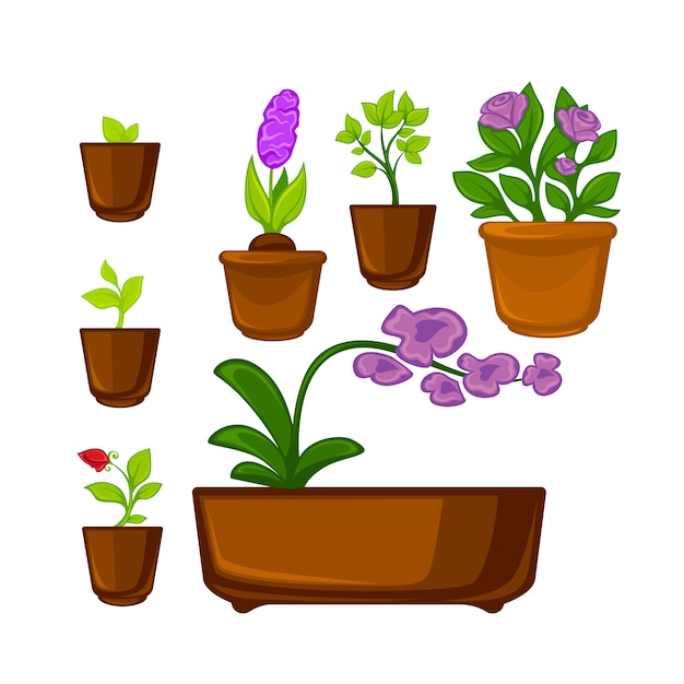 Pots plants with flowers and leaves set. Premium Vector