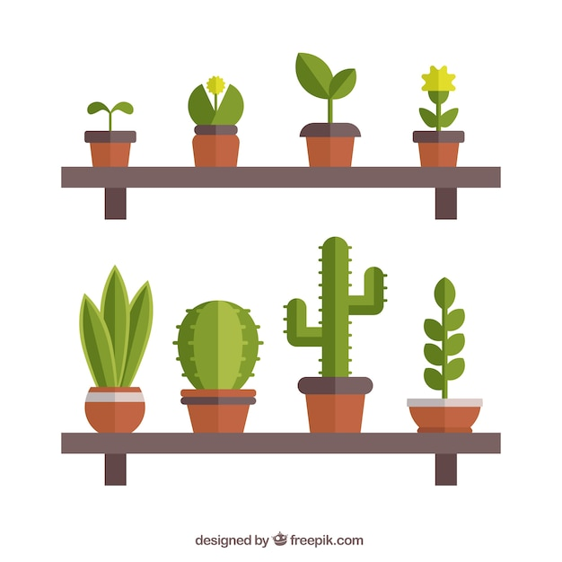 Pots on shelves in flat design Free Vector