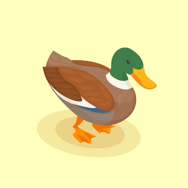 Poultry with colored duck isometric icon in cartoon style on yellow Free Vector