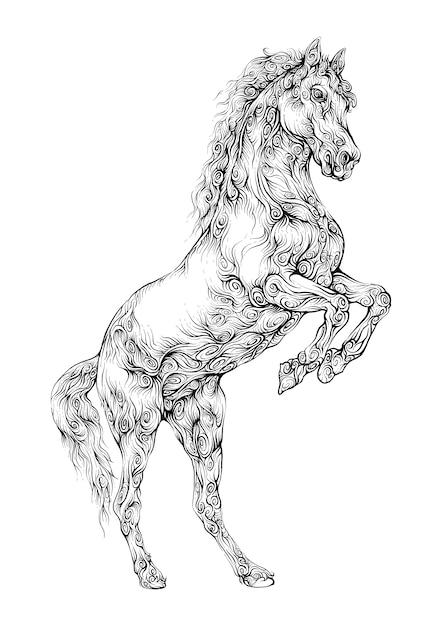 Prancing horse hand drawing Premium Vector