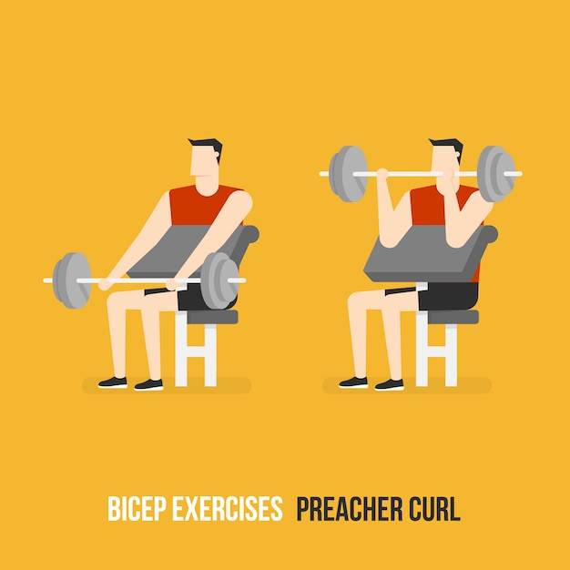 Preacher curl demostration