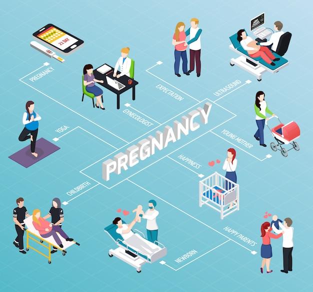 Pregnancy isometric flowchart Free Vector