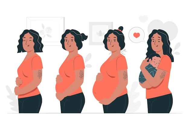 Illustrazione di concetto di fasi di gravidanza Vettore gratuito