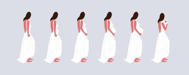 임신 단계 그림 개념 무료 벡터