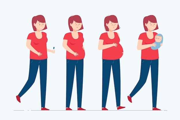 Pregnancy stages illustration concept Free Vector