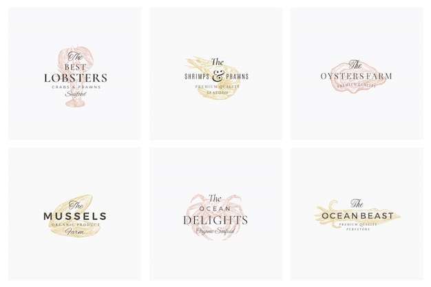 Premium seafood abstract  signs, symbols or logo templates set. elegant hand drawn shrimp, mussel, oyster, crab and squid sketches with classy retro typography. vintage luxury emblems. Premium Vector