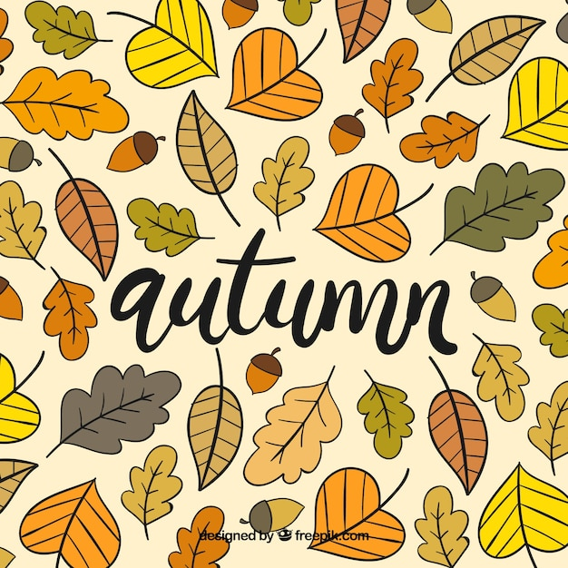 Pretty autumn background with a floral frame Free Vector
