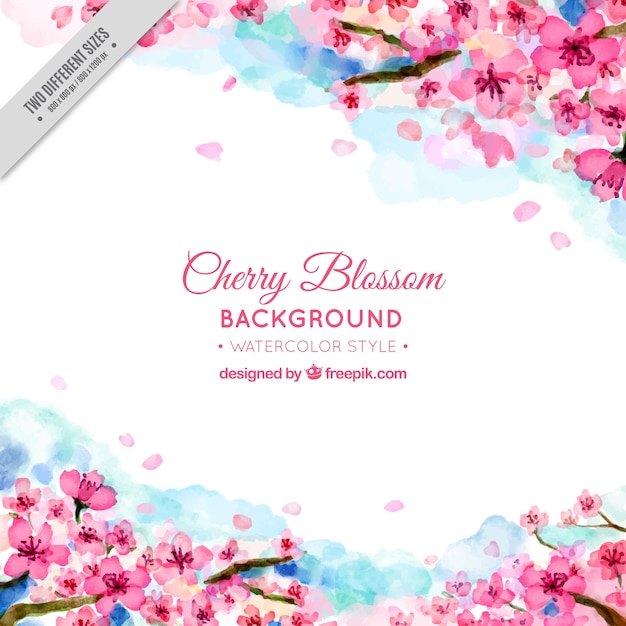Pretty background of watercolor cherry blossoms Free Vector