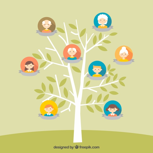 Pretty family tree in flat design