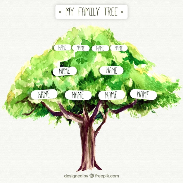 Download Vector Tree With Genealogical Family Vectorpicker