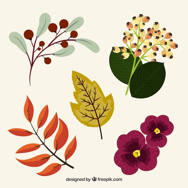 Pretty hand drawn flowers and vintage plants vector free download pretty hand drawn flowers and vintage plants free vector mightylinksfo