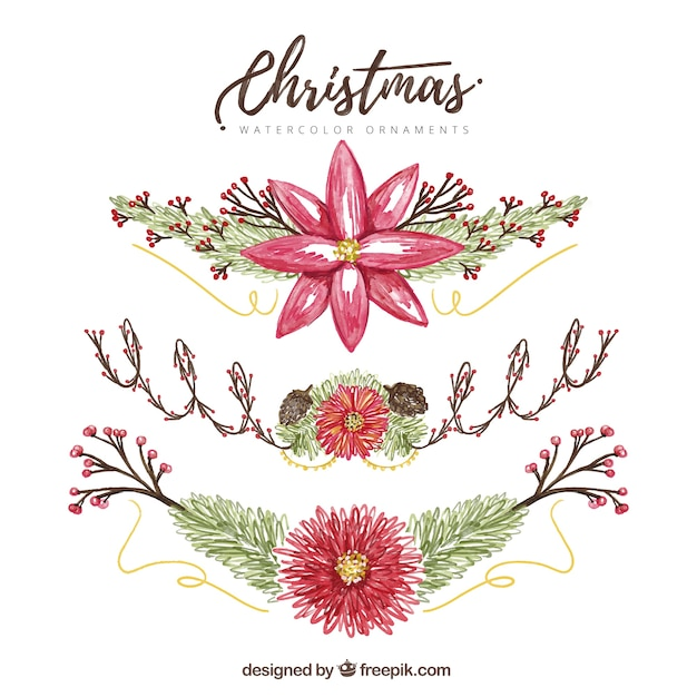Pretty Hand Painted Decorative Christmas Flowers Vector