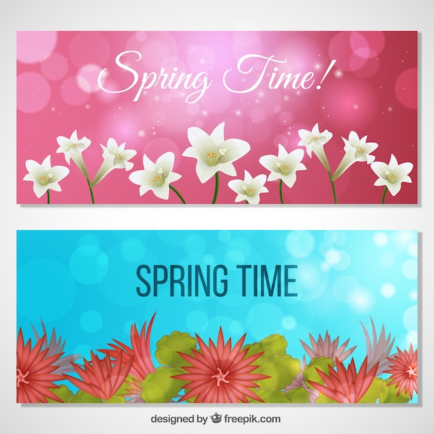 Pretty Spring Flowers Banners Vector Free Download