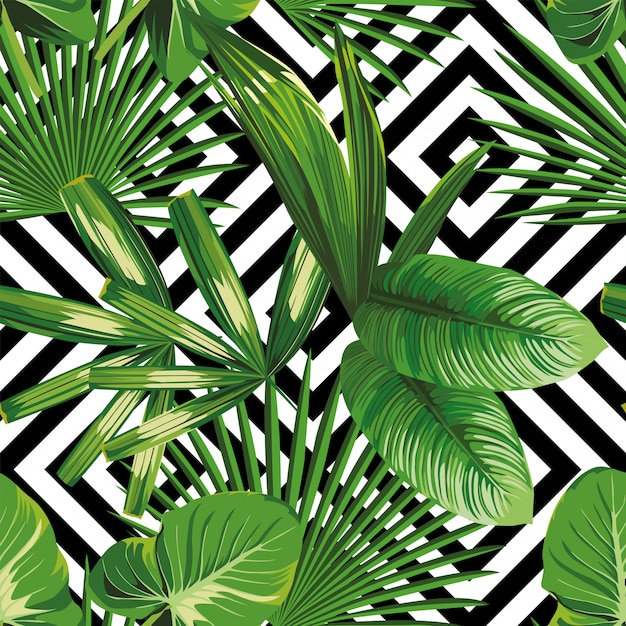 Print Summer Exotic Jungle Plant Tropical Palm Leaves