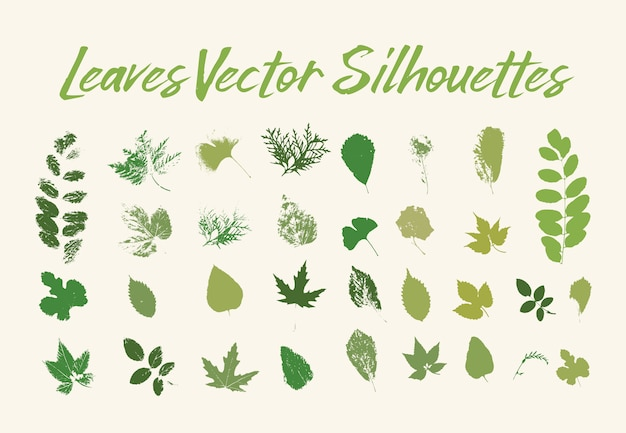 Print of tree leaves. greenery of flora or plants Free Vector