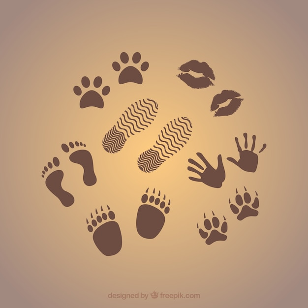 Prints graphics Free Vector