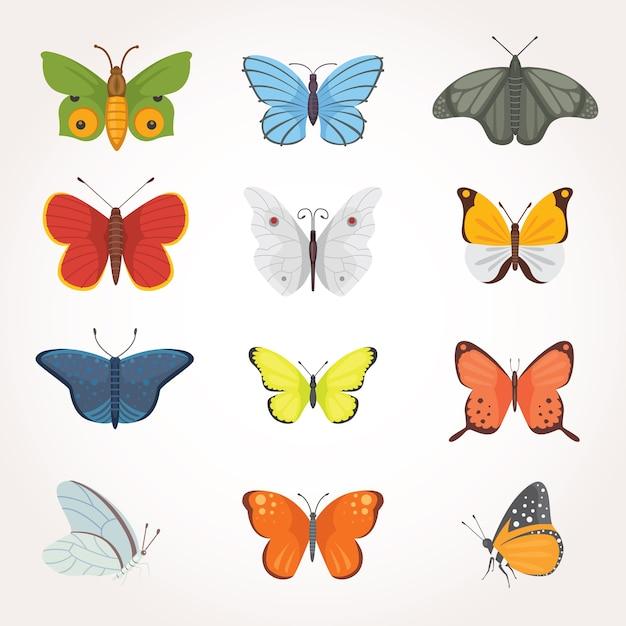 カラフルな蝶のイラストのプリントセット。夏の虫。 Premiumベクター