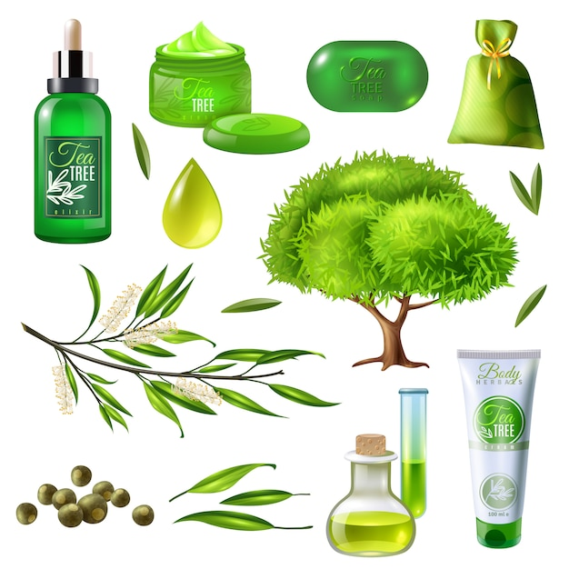 Products of tea tree set Free Vector