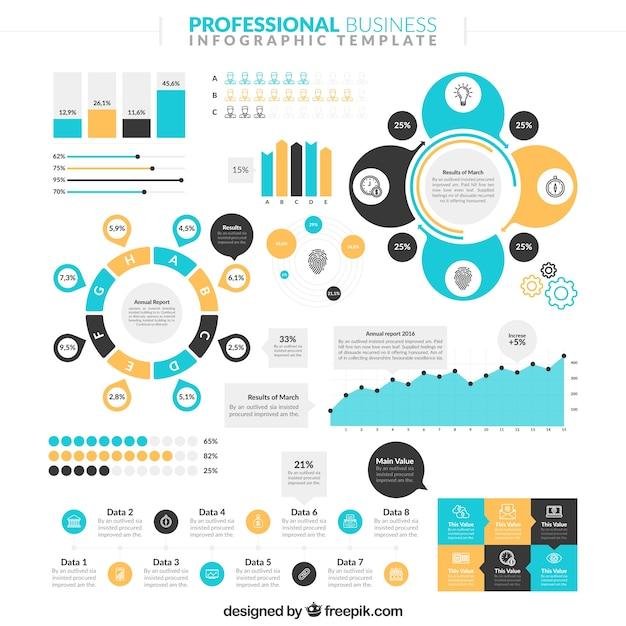 Professional Designers: Professional Infographic Vector