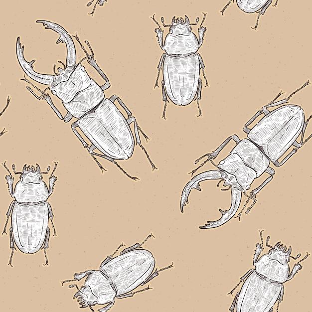Токара красный жук-олень (prosopocoilus disisimis) на острове токара, япония. рука рисовать эскиз бесшовные модели вектор. мужчина и женщина. Premium векторы