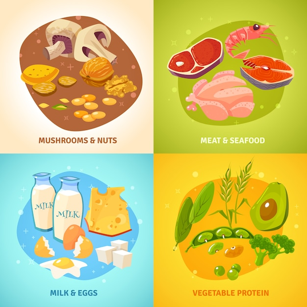 Protein food concept card set Free Vector
