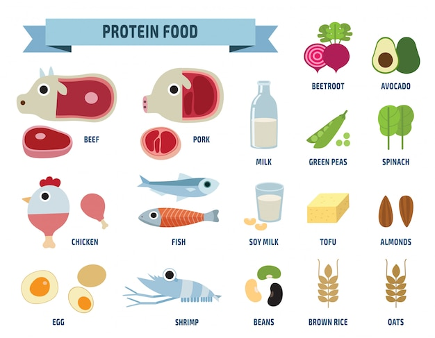 Protein food icons isolated on white Premium Vector