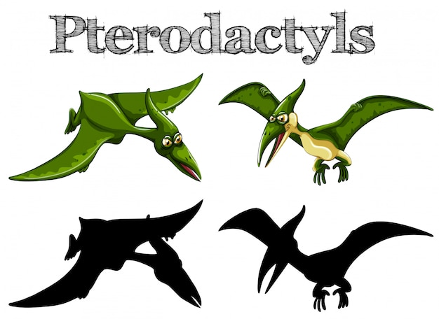 Pterodactyls in green and silhouette Free Vector