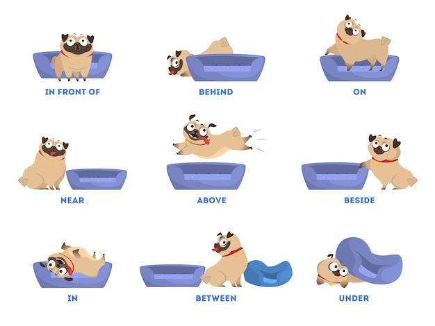 Pug set. learning preposition concept. animal above and behind Premium Vector