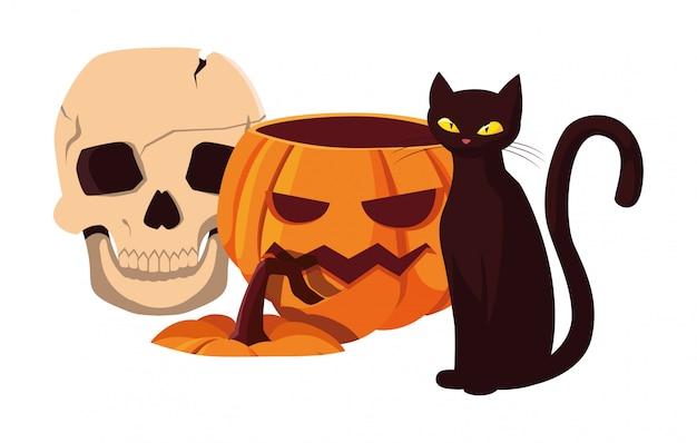 Pumpkin cat happy halloween celebration Premium Vector