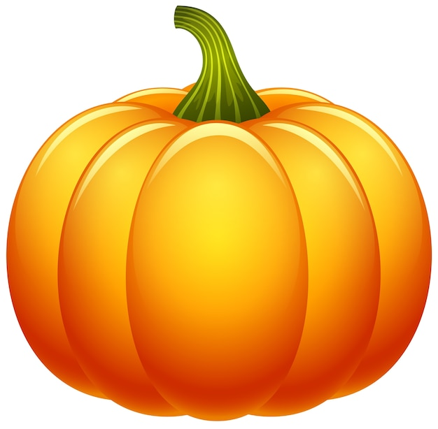 Pumpkin isolated on white background Premium Vector