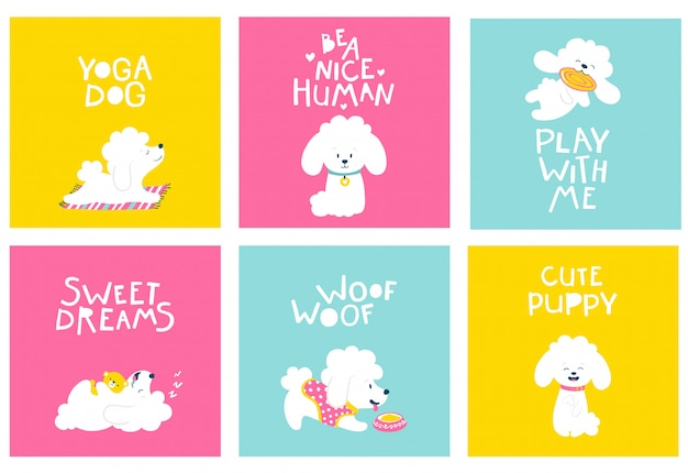 Puppies dog. set of friendly postcards with a poodle. cartoon illustration of a white animal on bright backgrounds in a simple childish hand-drawn style Premium Vector