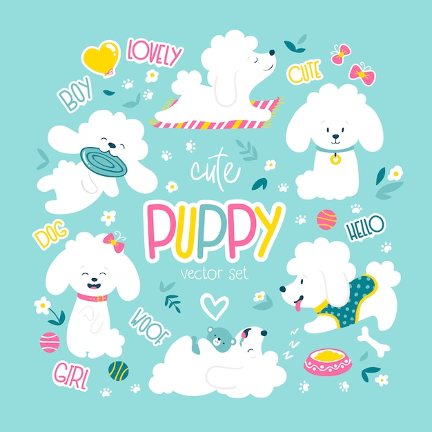 Puppies set. funny white little poodle dogs in a daily routine. Premium Vector