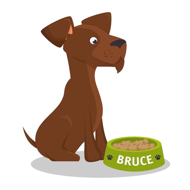Puppy bruce stiting eat food Premium Vector