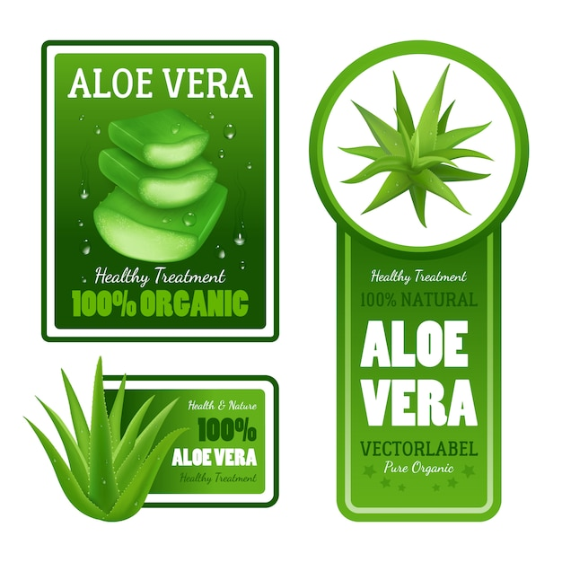 Pure organic natural green aloe vera leaves healthy treatment label banners with text Free Vector