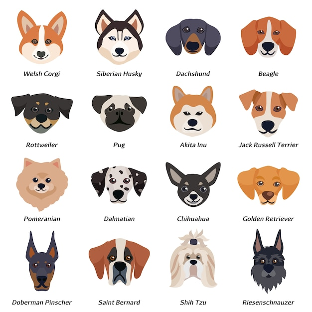 Purebred dogs faces icon set Free Vector