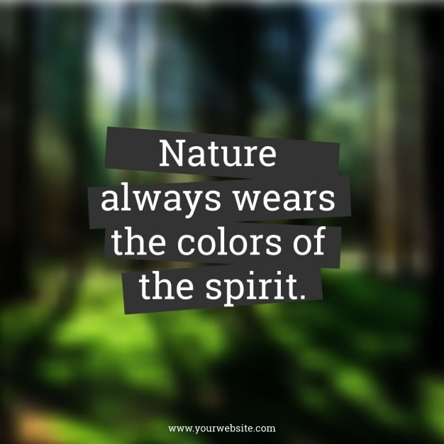 Quote on blurred forest background Free Vector