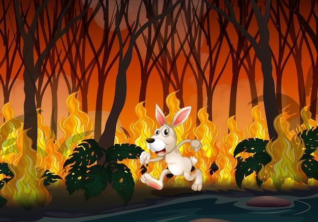 A rabbit running in wildfire Premium Vector