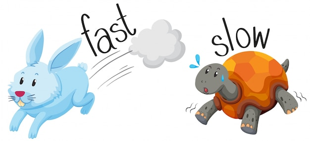 Rabbit runs fast and turtle runs slow Free Vector