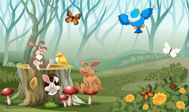 Rabbits and birds living in the forest Free Vector