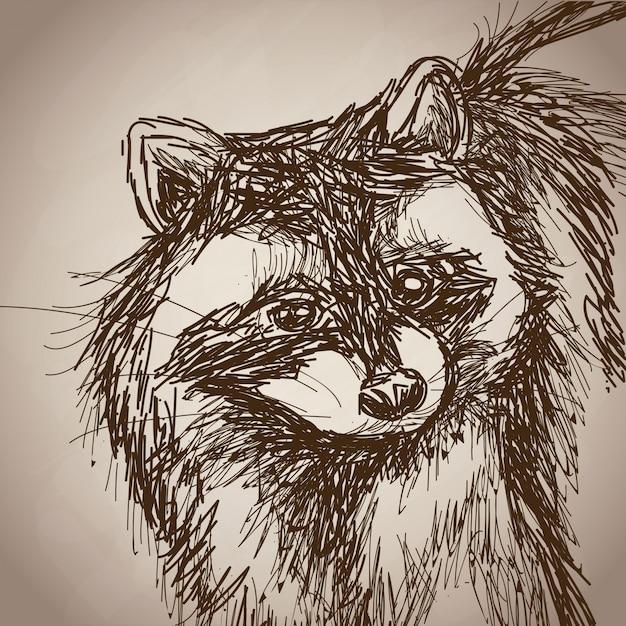 アライグマの肖像画の森の手描きのヴィンテージ Premiumベクター