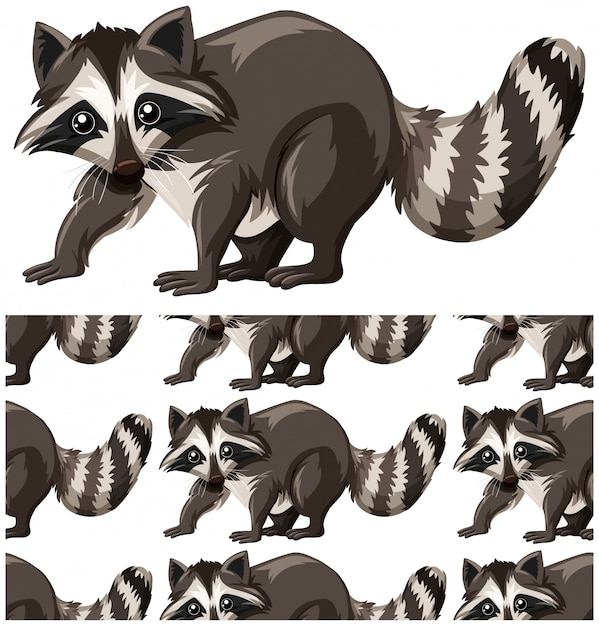 Raccoon seamless pattern isolated on white Free Vector