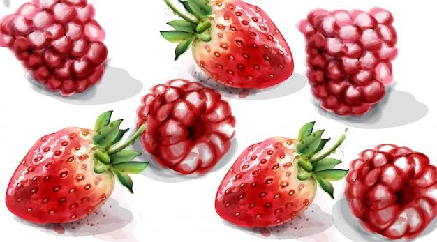 Raspberry and strawberry watercolor Premium Vector