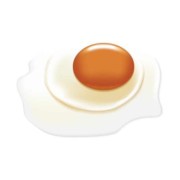 Raw egg with big yolk. Premium Vector