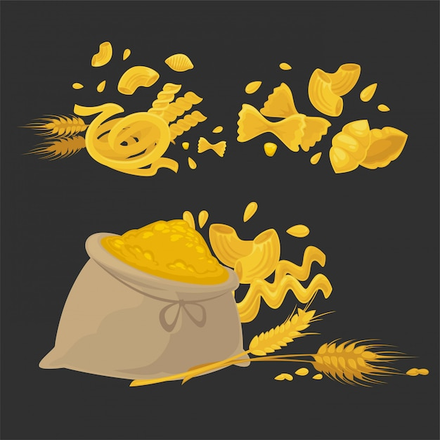 Raw pasta of solid kinds made of natural wheat Premium Vector