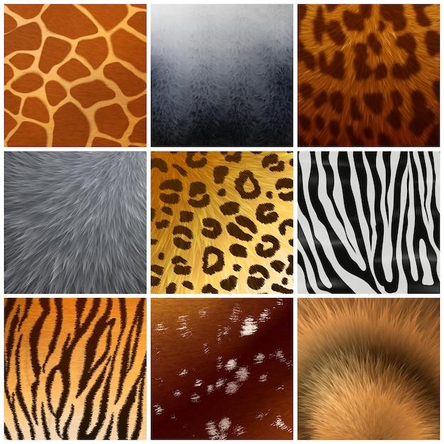 本物と偽物のエキゾチックな毛皮の皮のテクスチャの色パターン9つの現実的なサンプルコレクションが分離されました 無料ベクター